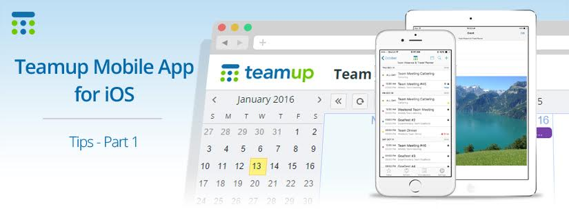 Teamup mobile app for iOS
