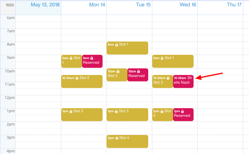 A client view of a booking calendar.