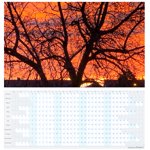 Printable calendars with personalized images, yearly or monthly.