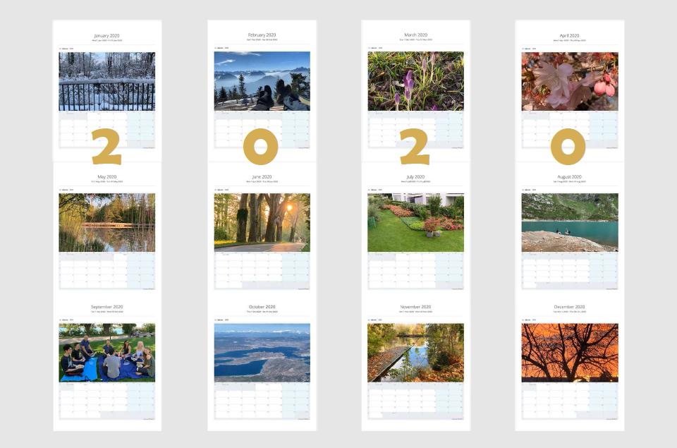 Teamup Printable 2020 Monthly Calendar