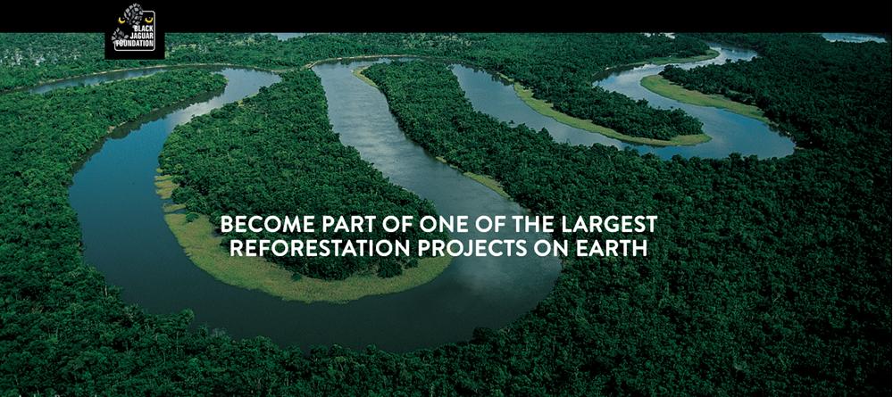 Black Jaguar Foundation - the largest reforestation project